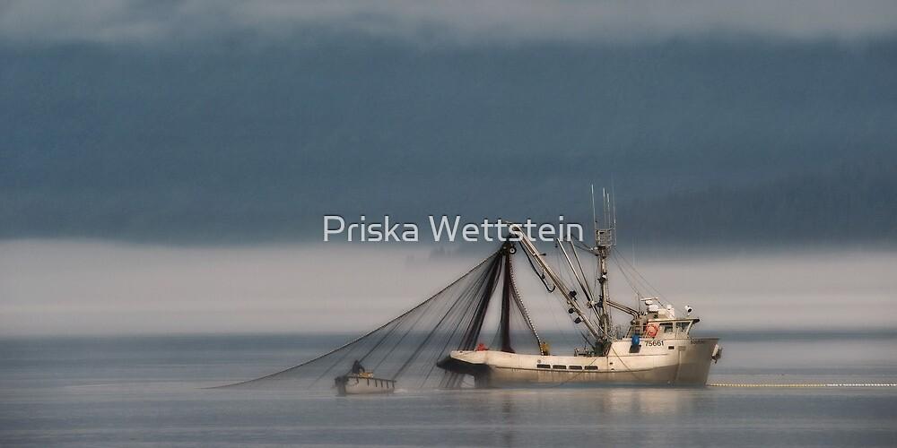 Kingfisher by Priska Wettstein