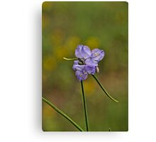 Purple Passion  Canvas Print