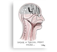 inside mens heads Canvas Print