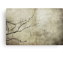 Mountain Ash in Winter Canvas Print