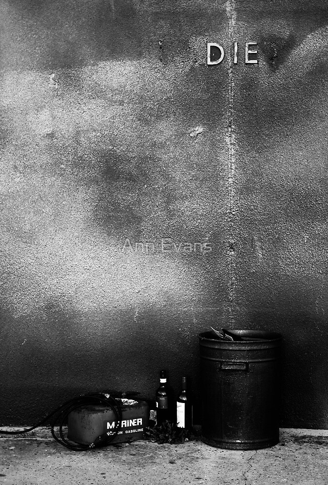 Let it Die by Ann Evans