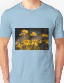 Desert Daisies T-Shirt