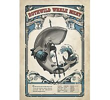 Rothwild Whale Meat Poster Photographic Print