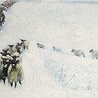Swaledales in Snow by Sue Nichol