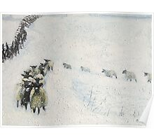 Swaledales in Snow Poster