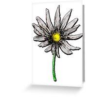 Simple Daisy Flower Greeting Card