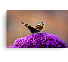 Butterfly & Lilac #2 Canvas Print