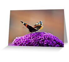 Butterfly & Lilac #2 Greeting Card