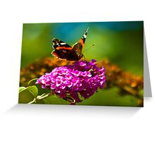 Butterfly & Lilac #3 Greeting Card