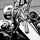 Harley controls by Alexander Meysztowicz-Howen
