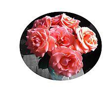 Pop go the roses Photographic Print