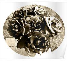 Infrared Roses Poster