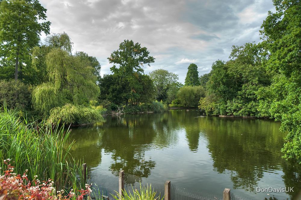 Dulwich Lake HDR No2: London, UK. by DonDavisUK