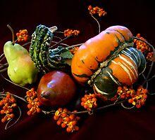 Harvest by kkmarais
