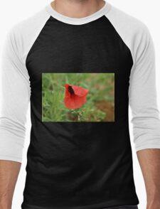 Poppy Men's Baseball ¾ T-Shirt
