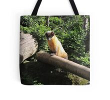 Golden Afternoon (Yellow Throated Marten) Tote Bag