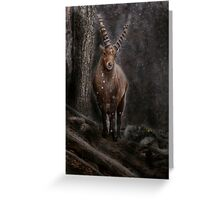 Ibex in Winter - Photoshop Manipulation Greeting Card