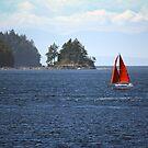 Sail Away by Sandra Harris