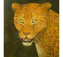 Leopard. Photographic Print