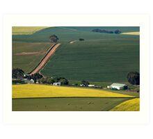 Overberg farmstead Art Print