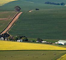 Overberg farmstead by serendip