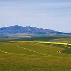 Overberg landscape by serendip