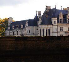 Château de Chenonceau by telenna