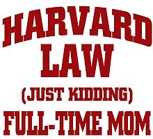 Harvard law (Just kidding) full time mom by imgarry