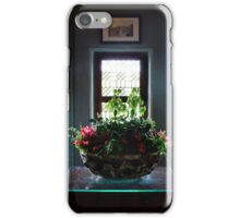 Cabinet at Chenonceau iPhone Case/Skin