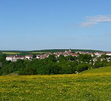 A distant view of Flavigny, France by Kiriel