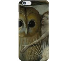 Bosch - The Garden of Earthly Delights - owl detail iPhone Case/Skin