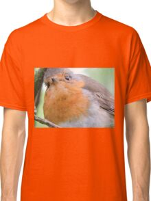I'm Youth, I'm Joy Classic T-Shirt