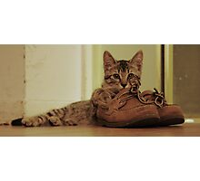 Boris and my Sperry's  Photographic Print