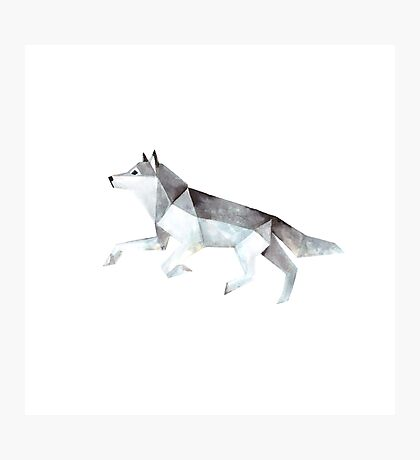 Low Poly Watercolor - Wolf Photographic Print