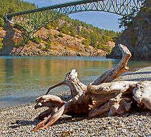 Deception Pass Bridge by Barb White