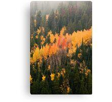 A Colorado Fall Canvas Print