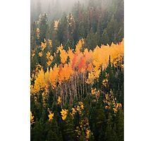 A Colorado Fall Photographic Print