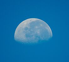 The Moon Today 8/30/2010 at 9:13 am by imagetj