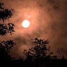Haunting Moon by MarjorieB