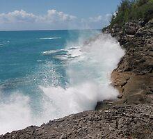 Just a little Splash - Waves breaking on the rocks by leeanne6a