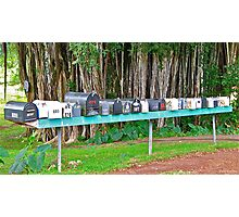 Hana Highway Postboxes Photographic Print
