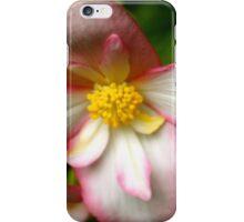 pretty in pink, Monet's Garden, France iPhone Case/Skin
