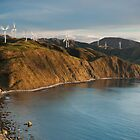Sunset at the Makara Wind Farm by Brendon Doran