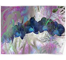 Iridescent Orchids 1  Poster
