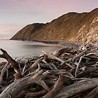 Dusk at Opau Bay, near Makara Beach by Brendon Doran