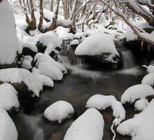 Fresh Snowfall - Merritts Creek, Thredbo, Australia by Mike Banks