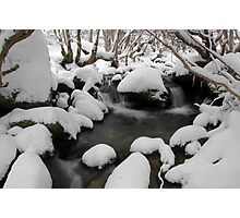 Fresh Snowfall - Merritts Creek, Thredbo, Australia Photographic Print