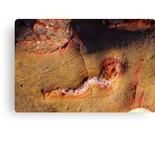 Nature's own sculpture... Canvas Print