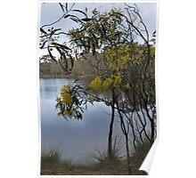 Gold at the Lake Poster