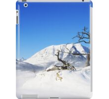 Winter in Burmis iPad Case/Skin